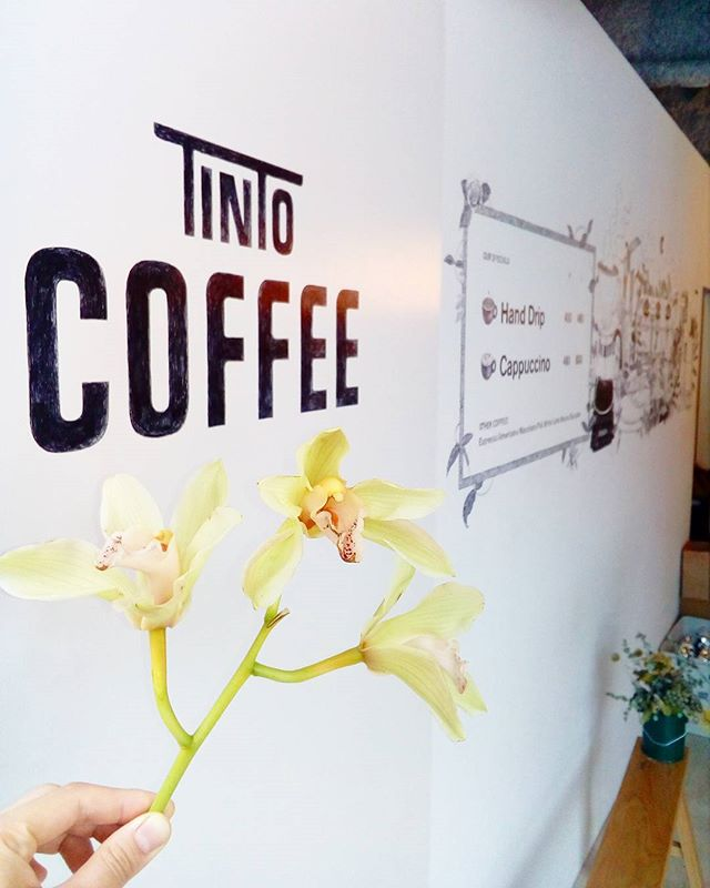 おはようございますTINTOCOFFEE OPENしました気持ちいい風がふいているので今日もドアを全開です今日も良い1日を♪ ..TINTO COFFEE 月ー金  9:00ー18:30土・祝 10:00ー18:30#coffee#coffeetime#coffeestand#tintocoffee#cake#cookie#お菓子#ケーキ#クッキー#コーヒー#コーヒースタンド#渋谷#青山
