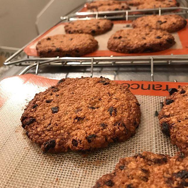 オートミールとレーズンのクッキーが焼けました!ザクザクした食感とシナモンの香りがアクセントの、人気のおやつです。朝ごはんがわりにもオススメです!#coffee#coffeestand#tintocoffee#cookie#お菓子#おやつ#クッキー#コーヒー#コーヒースタンド#渋谷#青山