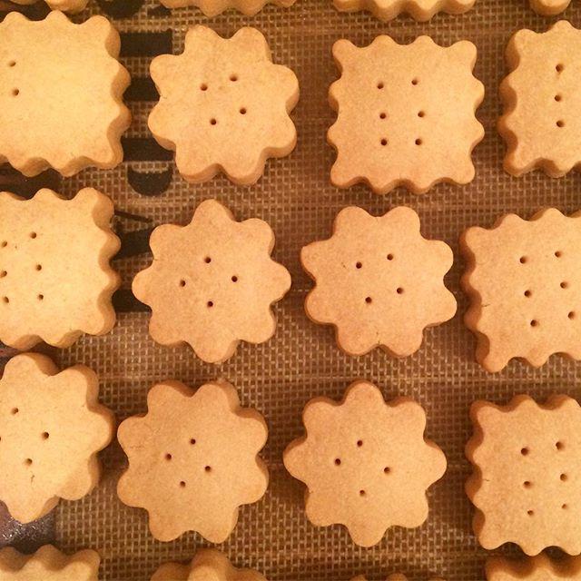 何か少し食べたいなってゆう時にちょうど良い【ショートブレッド】焼けてます︎ #TINTOCOFFEE#coffee#cake#cookies#コーヒー#ケーキ#クッキー#渋谷#表参道#青山#渋谷コーヒー#ケーキ#サンドイッチ#スパイスジンジャーシロップ#ショートブレッド